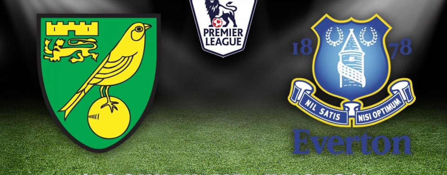 Norwich v Everton Betting Preview & Tips 12/12/15